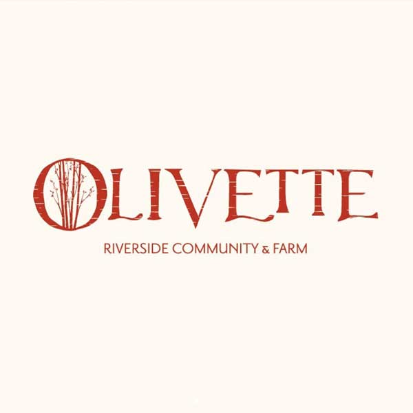 Olivette logo of birch tree
