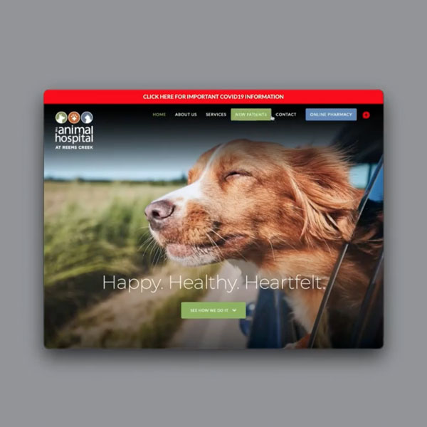 Animal Hospital at Reems Creek website shows an image of a dog with head hanging out of car window