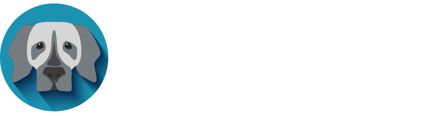 Sidekick Web Studio Logo