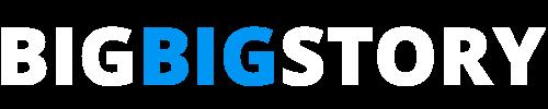 Big Big Story Logo