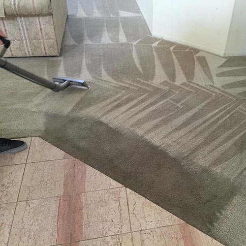 presto carpet cleaning service