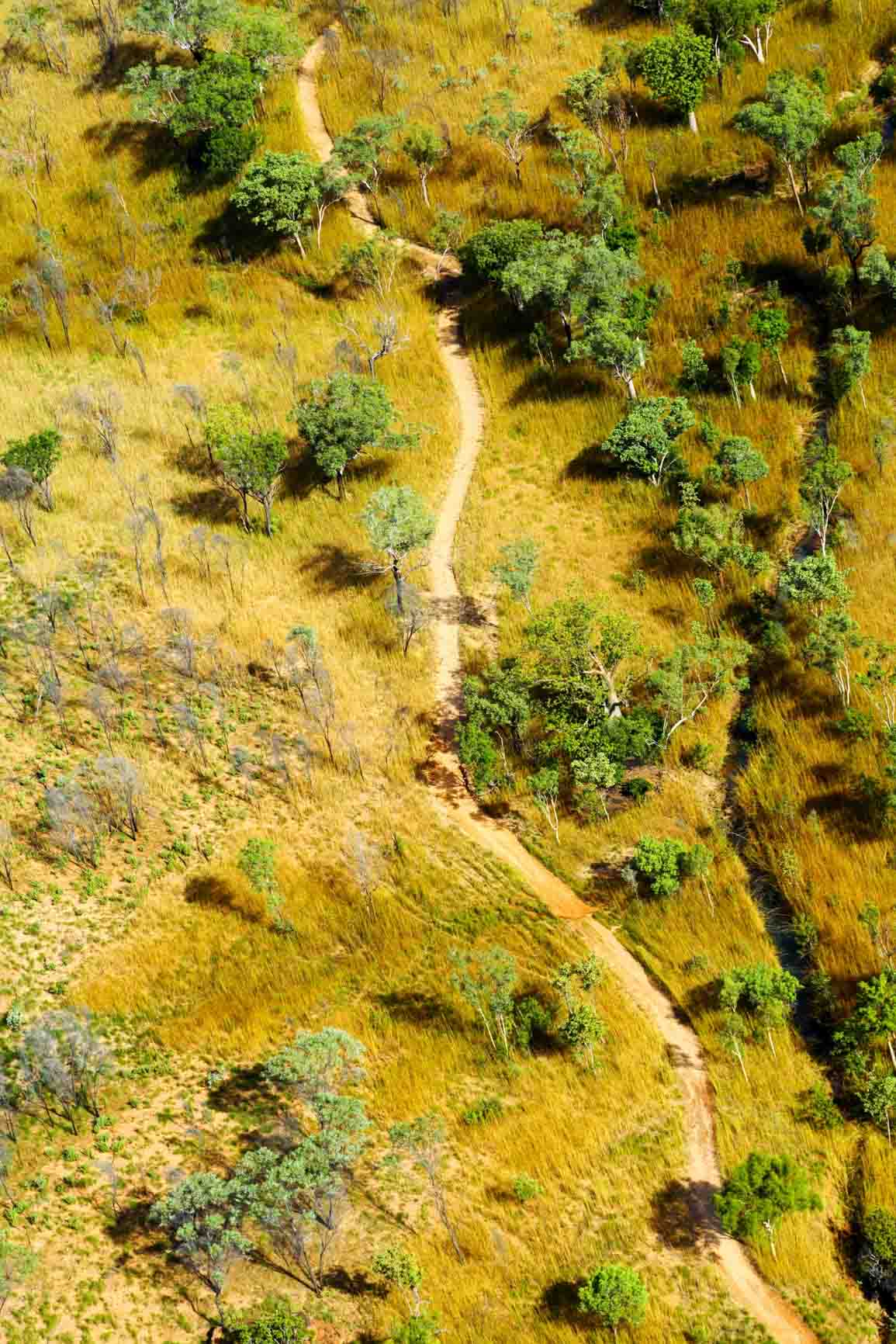 Winding dirt path shot from above through Western Australian bush