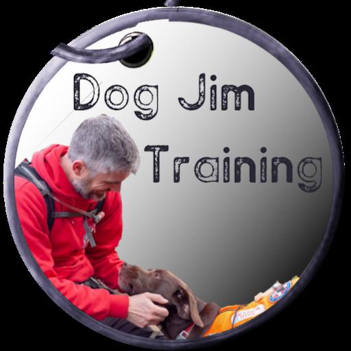 Dog Jim Training