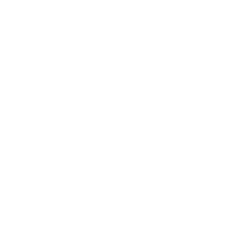 Chanel logo white