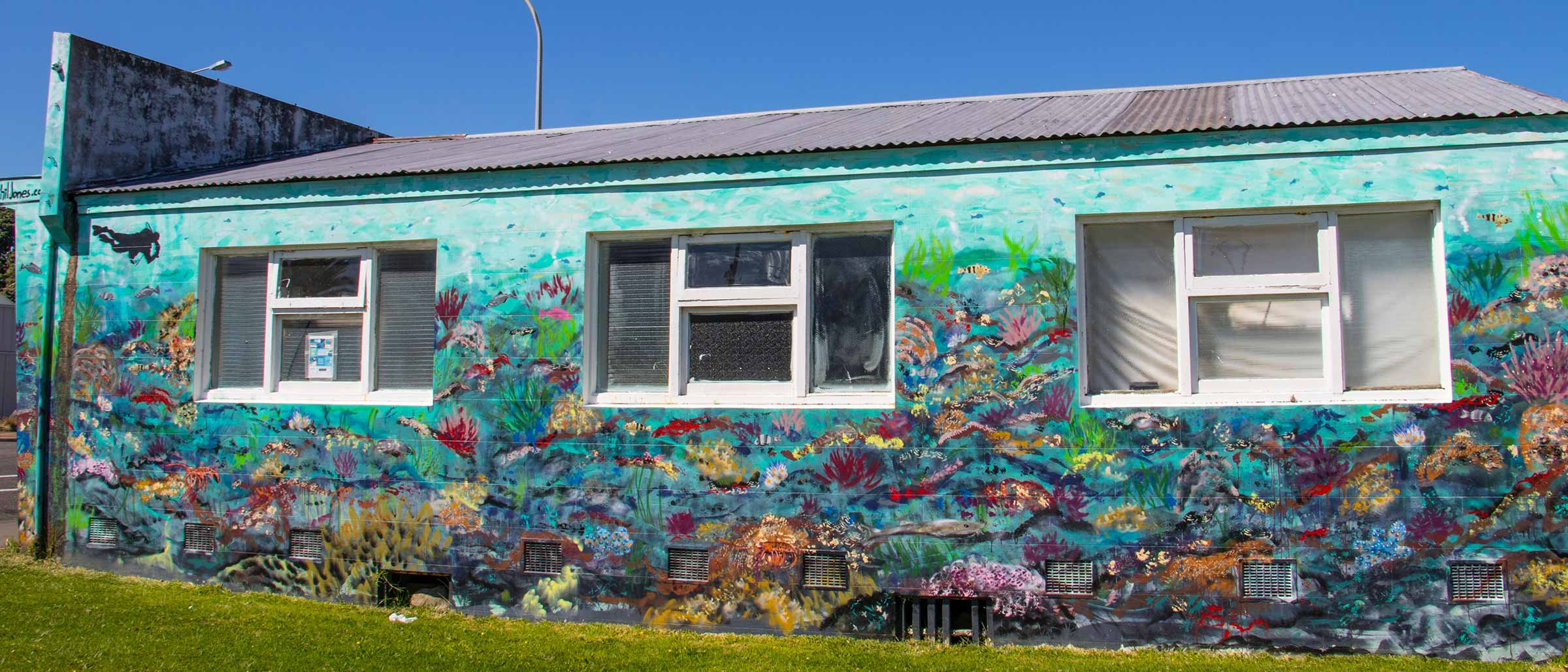 Patea Reef Mural