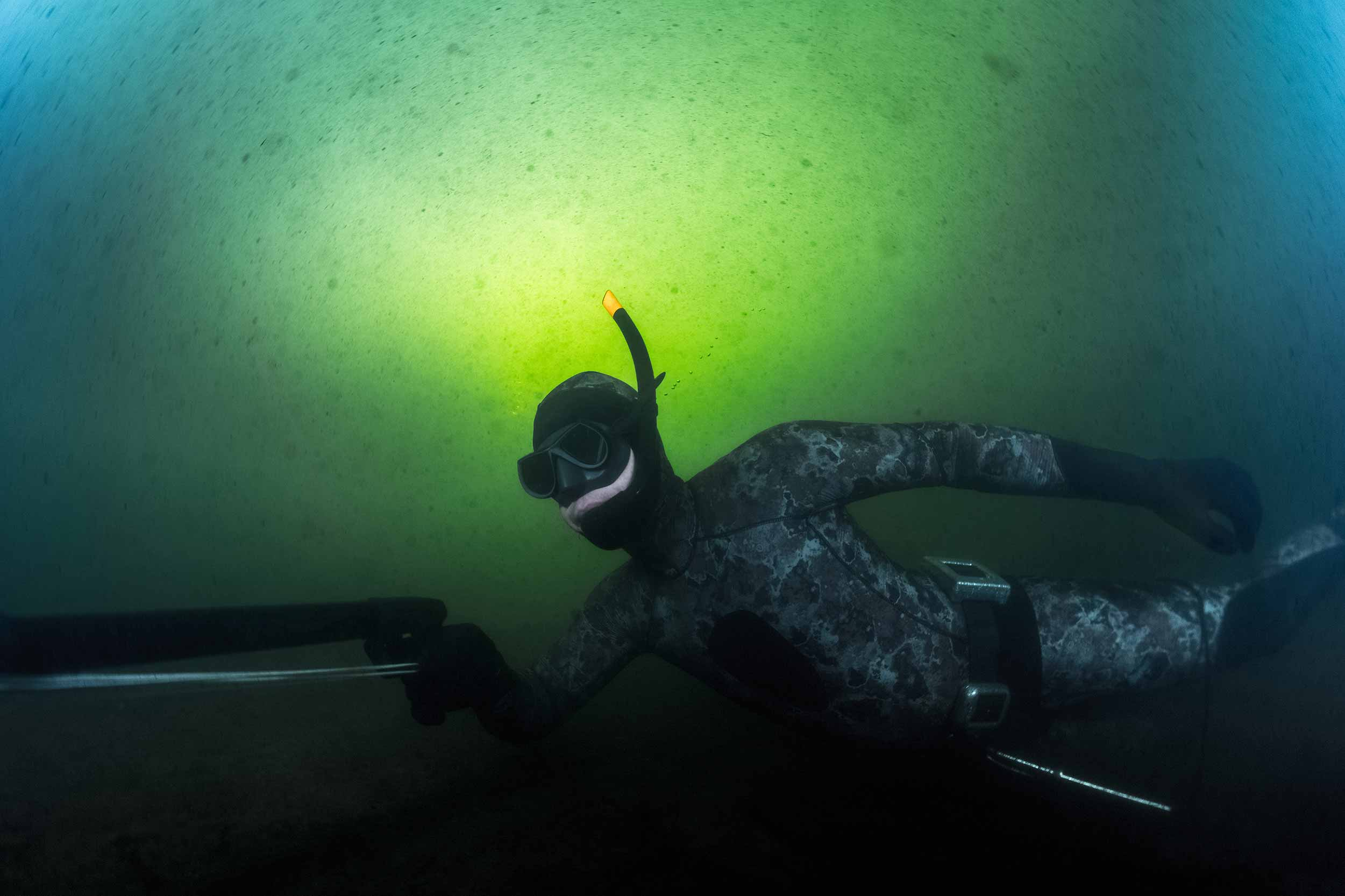 News from Spearfishing NZ