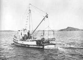 early mussel dredge in Hauraki gulf