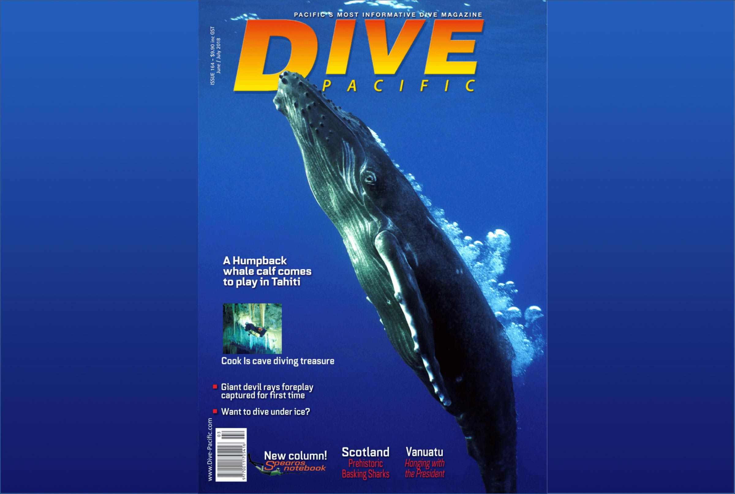 Big New Future Being Mapped for Dive Pacific, New Zealand's Dive Magazine