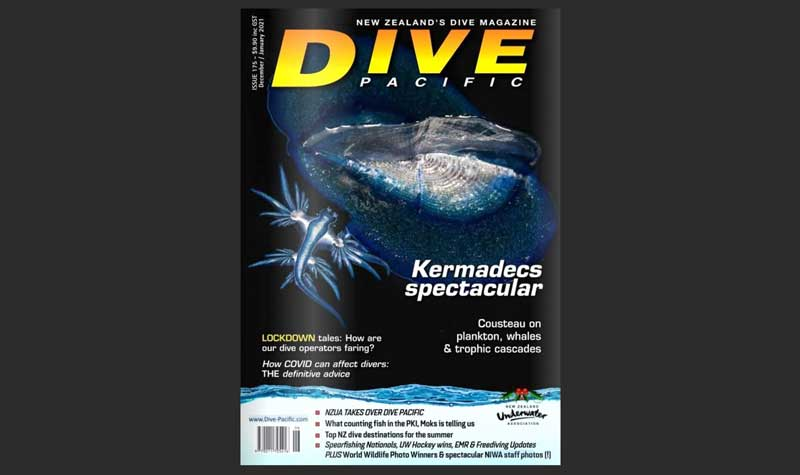 Enjoy Dive Pacific magazine – on us!