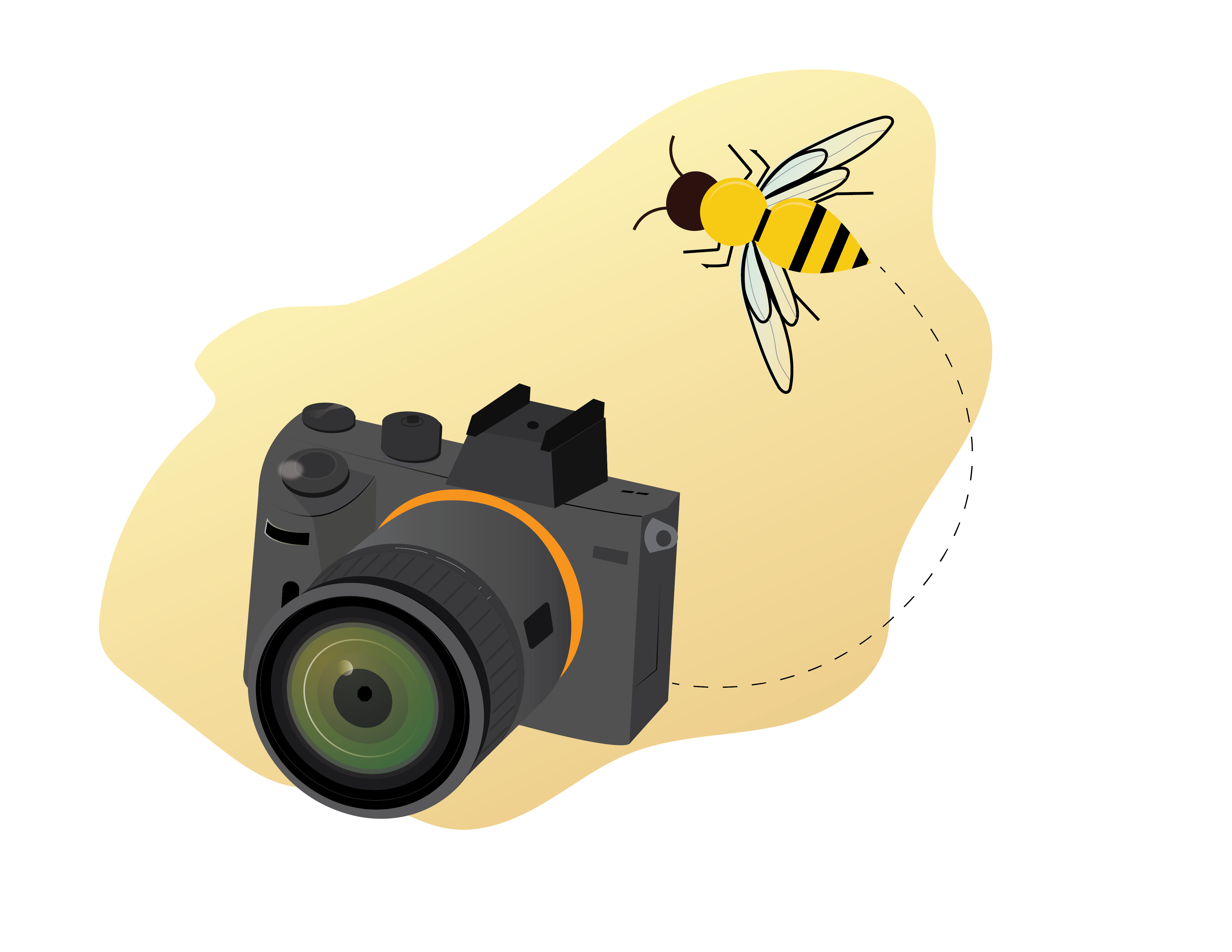 Bee Flying around Camera for photography services