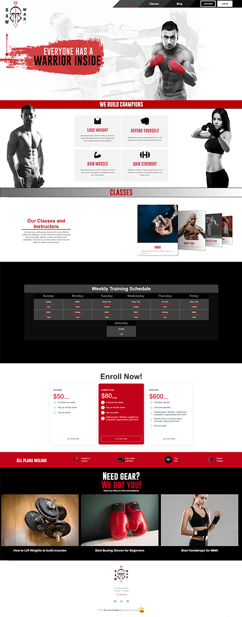 Portfolio Image of Fitness MMA Web Design