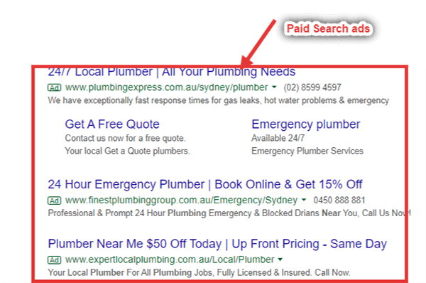 Paid Search Ads Example