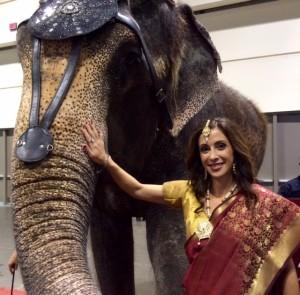 renee_elephant