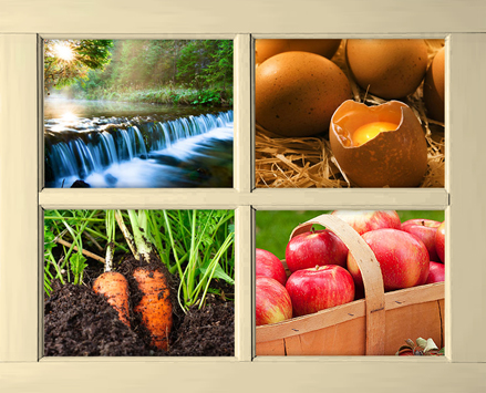 Four images in a window. Top left is of a waterfall, top right is of eggs on straw with one top removed to show a raw egg inside, bottom left shows carrots in soil, bottom right shows red apples in a basket