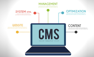 Choosing a CMS that you will Love