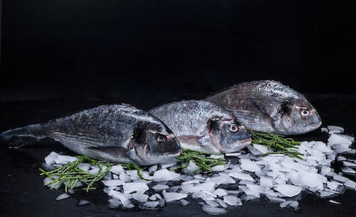 RAO Fish Merchants London Product Photography
