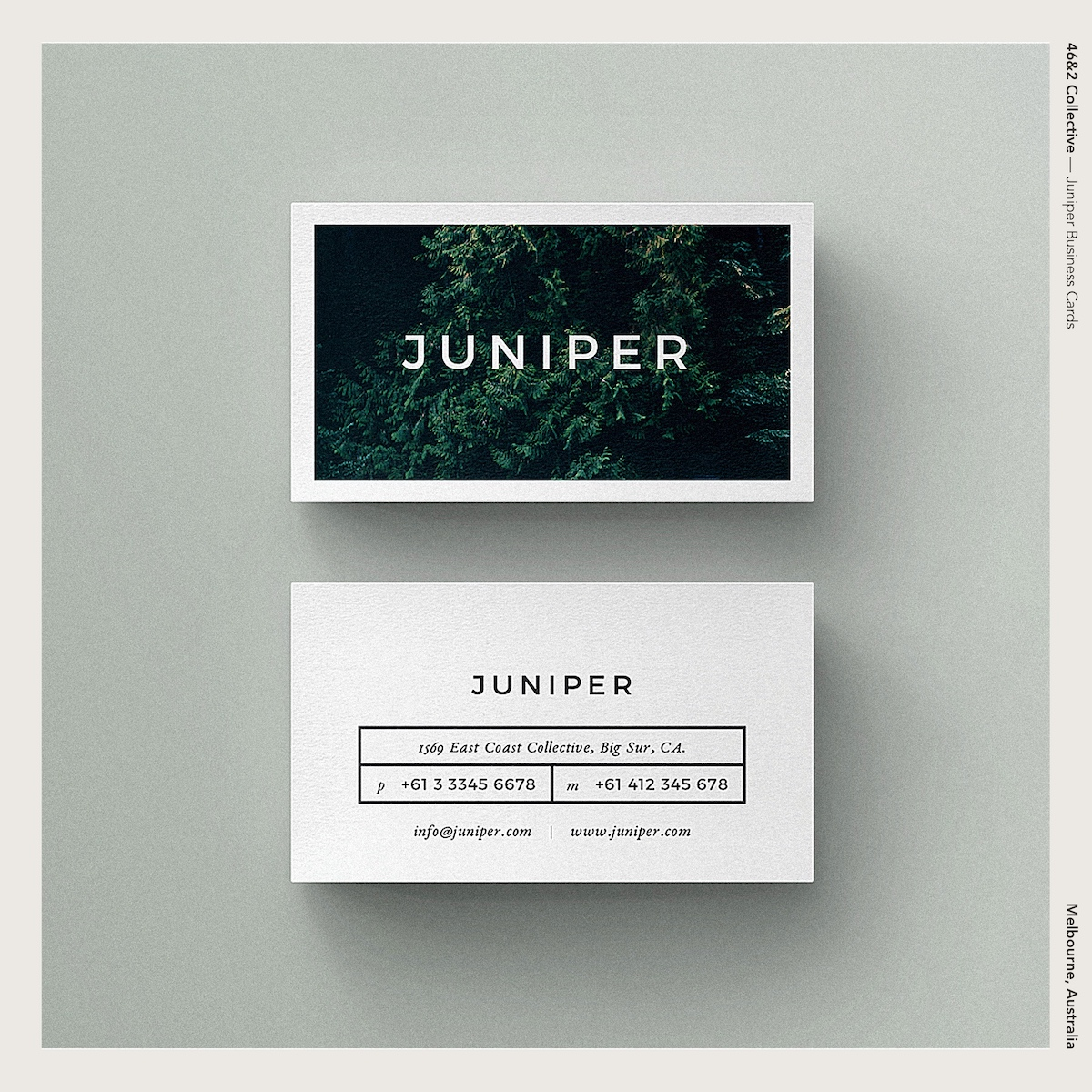 46&2 Collective — Juniper Business Cards