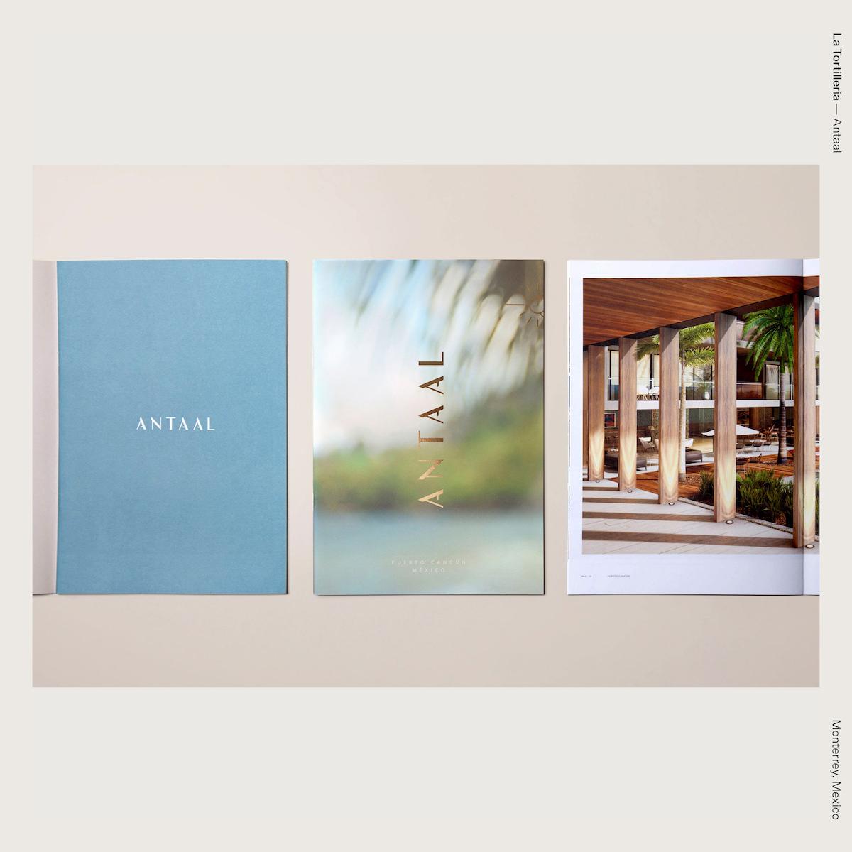 La Tortilleria — Antaal