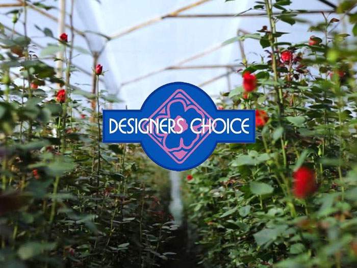 Building for Better Blooms – Designers Choice Creates Corporate Headquarters