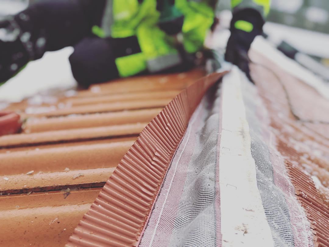 Takakuten takvård lägga nytt tak takläggning takläggare takbyte takskottning taknock