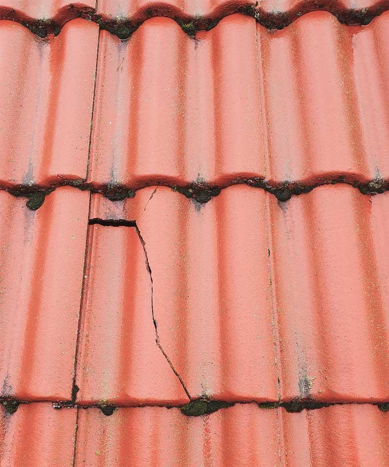 Takakuten takvård lägga nytt tak takläggning takläggare takbyte takskottning mossa på tak