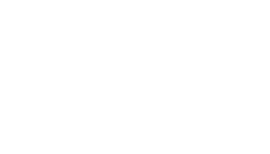 Rocky Mountain Immigrants Advocacy Network Logo White