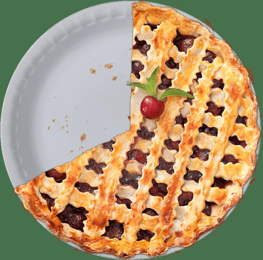 Pie Chart Humanitarian Slice