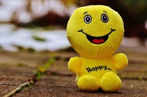You'll be left smiling after our window cleaning service!