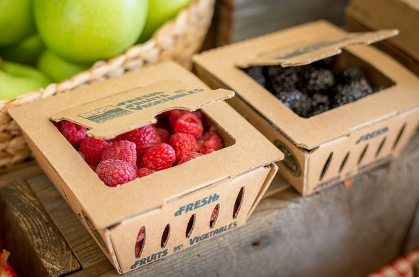 ReadyCycle - Sustainable Packaging for Produce