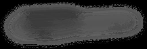 BlackVue DR900S tieň