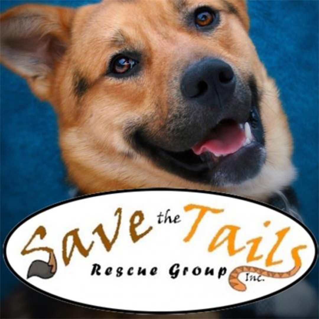 Save the Tails Day 2