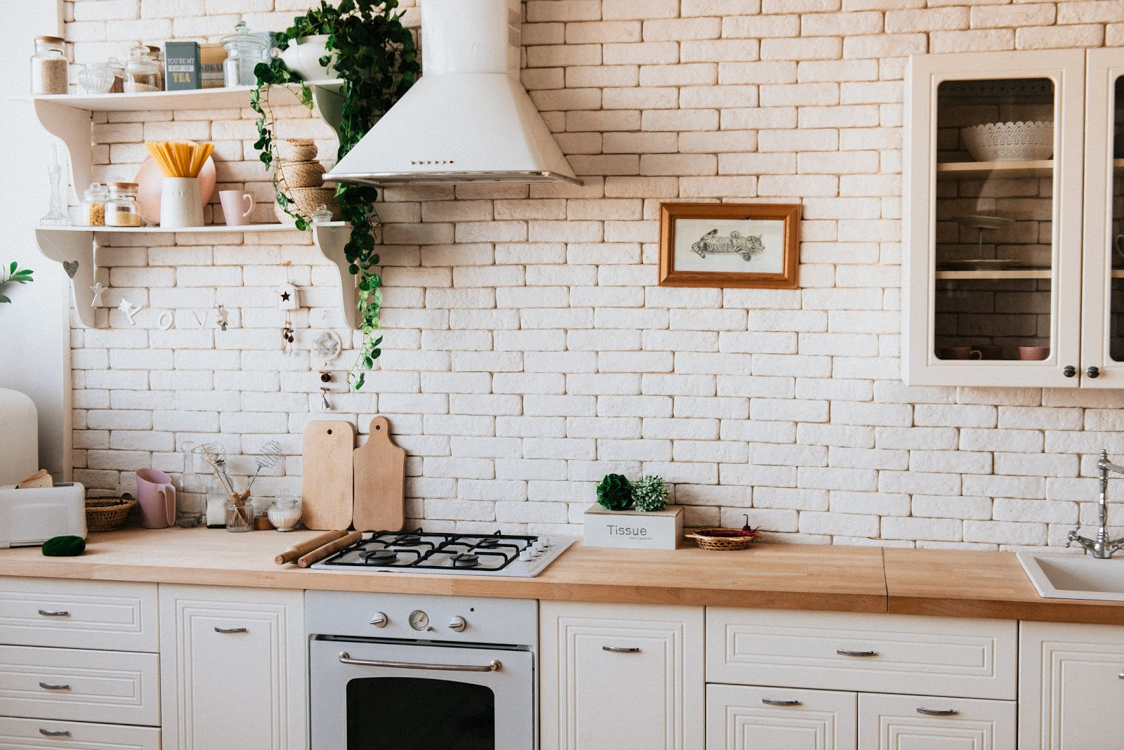 Steam convection oven: a conventional oven in a rustic kitchen