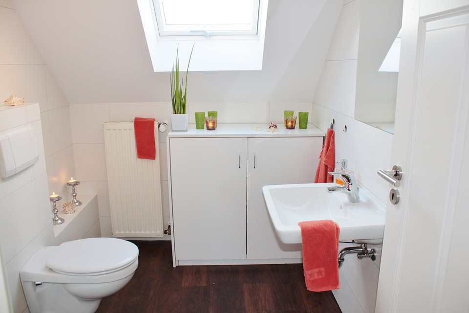 Tiny house appliances: a composting toilet in a small bathroom