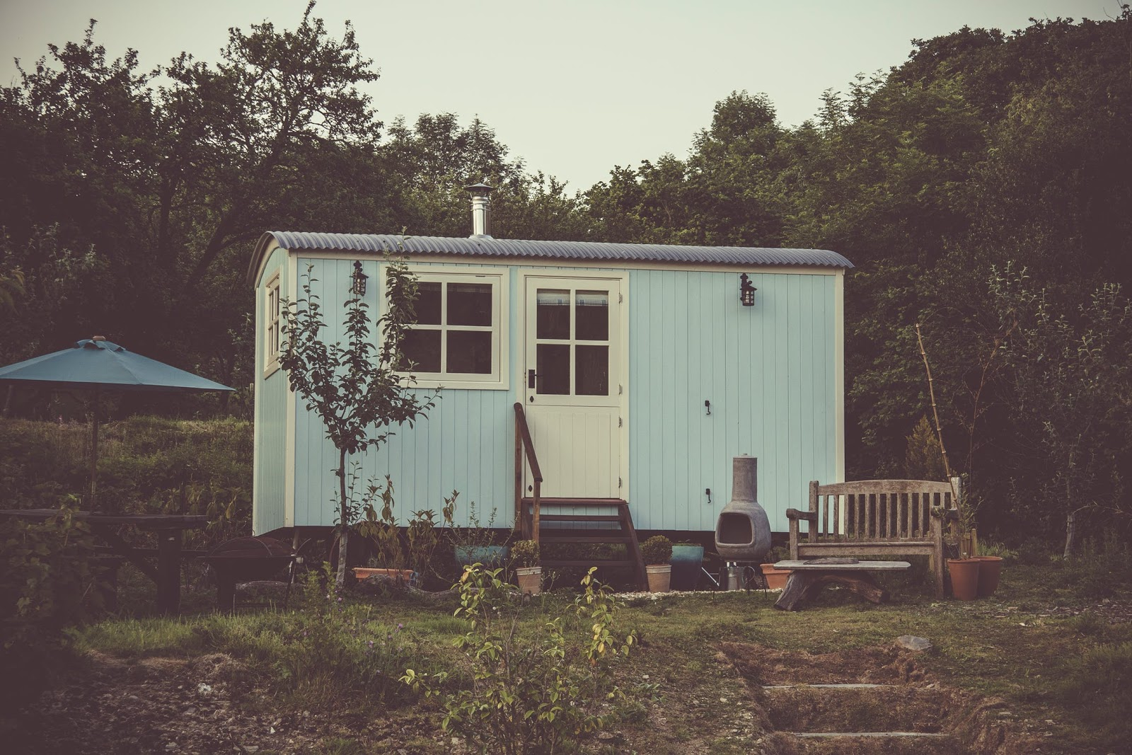 Tiny house appliances: a small blue house surrounded by trees