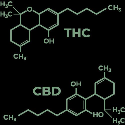 THC and CBD molecules