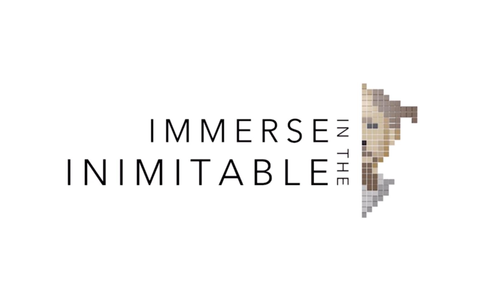 Immerse In the Inimitable_Ranga_portfolio