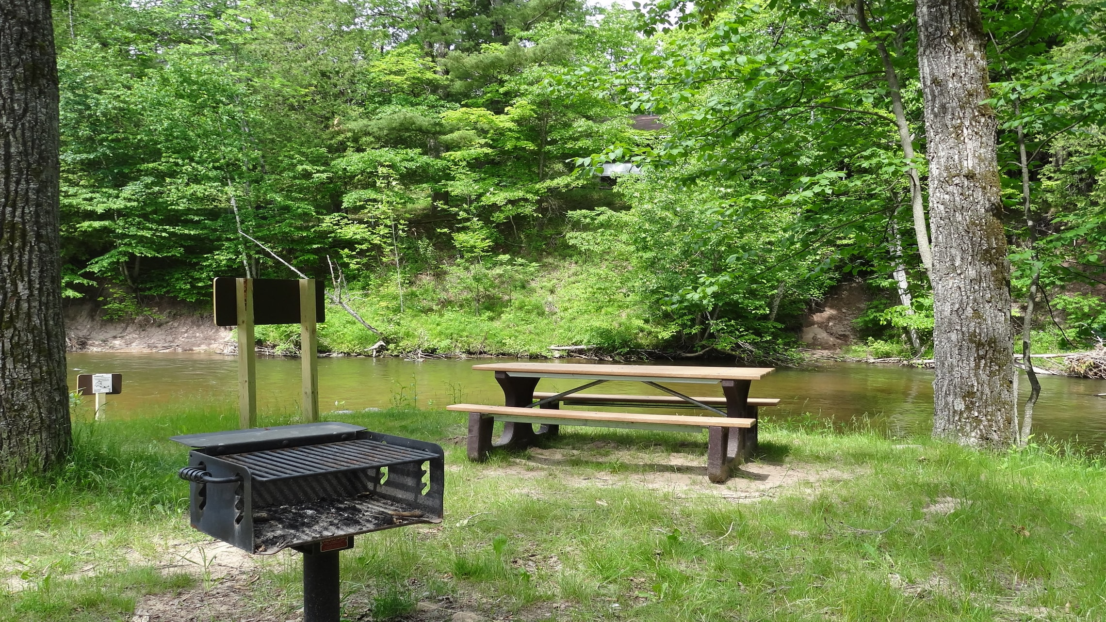 a picnic area on the Pine River