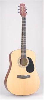 Columbia Arts Academy Lucida Guitar