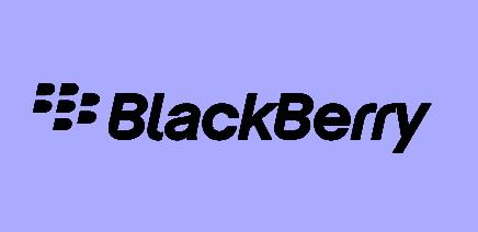 Blackberry Manager Apk