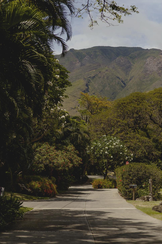 Sarah & Sam: Married in Maui, Hawaii