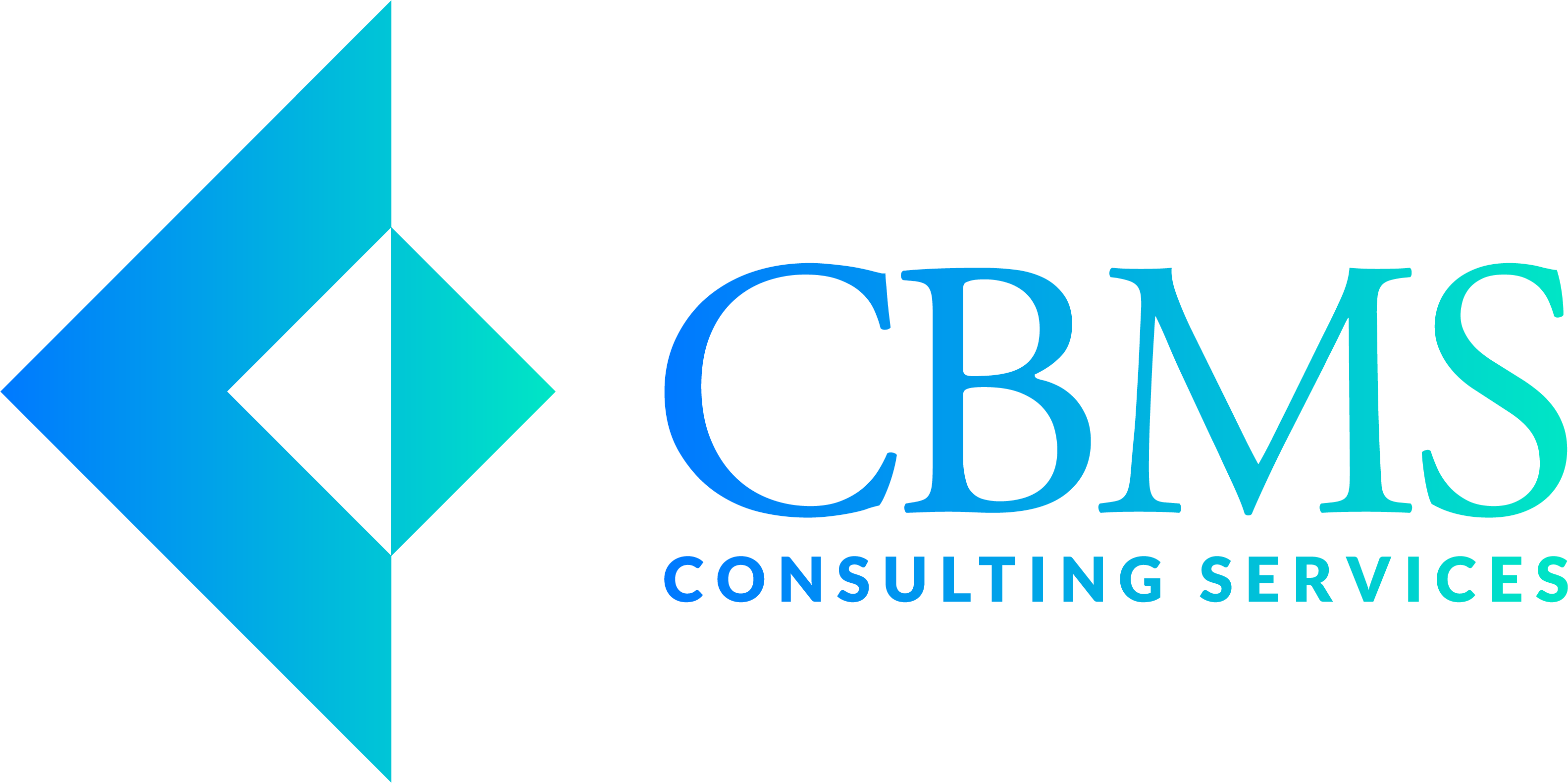 CBMS Consulting Services Long Island