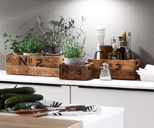 Kräuter-Garten in der eigenen Küche