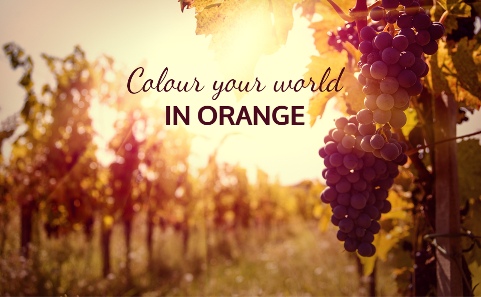 Image of vineyard with text overlay saying 'colour your world in Orange'