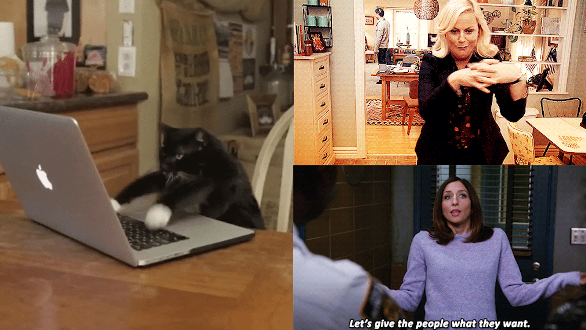 Screenshots of three gifs; on the left is a cat typing on a laptop, on the top right is a blonde woman doing a dance, and in the bottom left is a brunette woman shrugging with the text 'Let's give the people what they want'