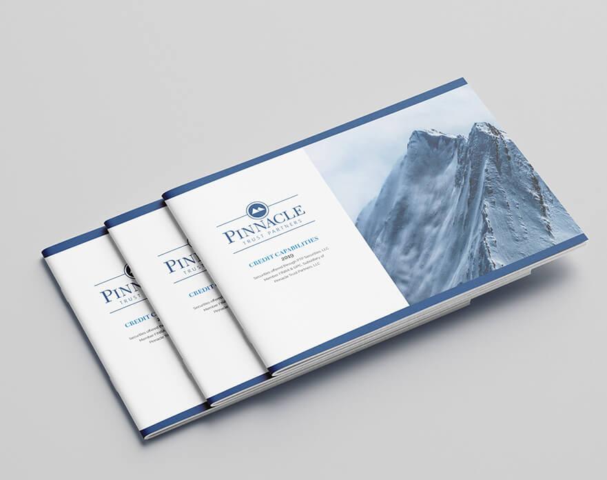 Pinnacle Brochure Image 1