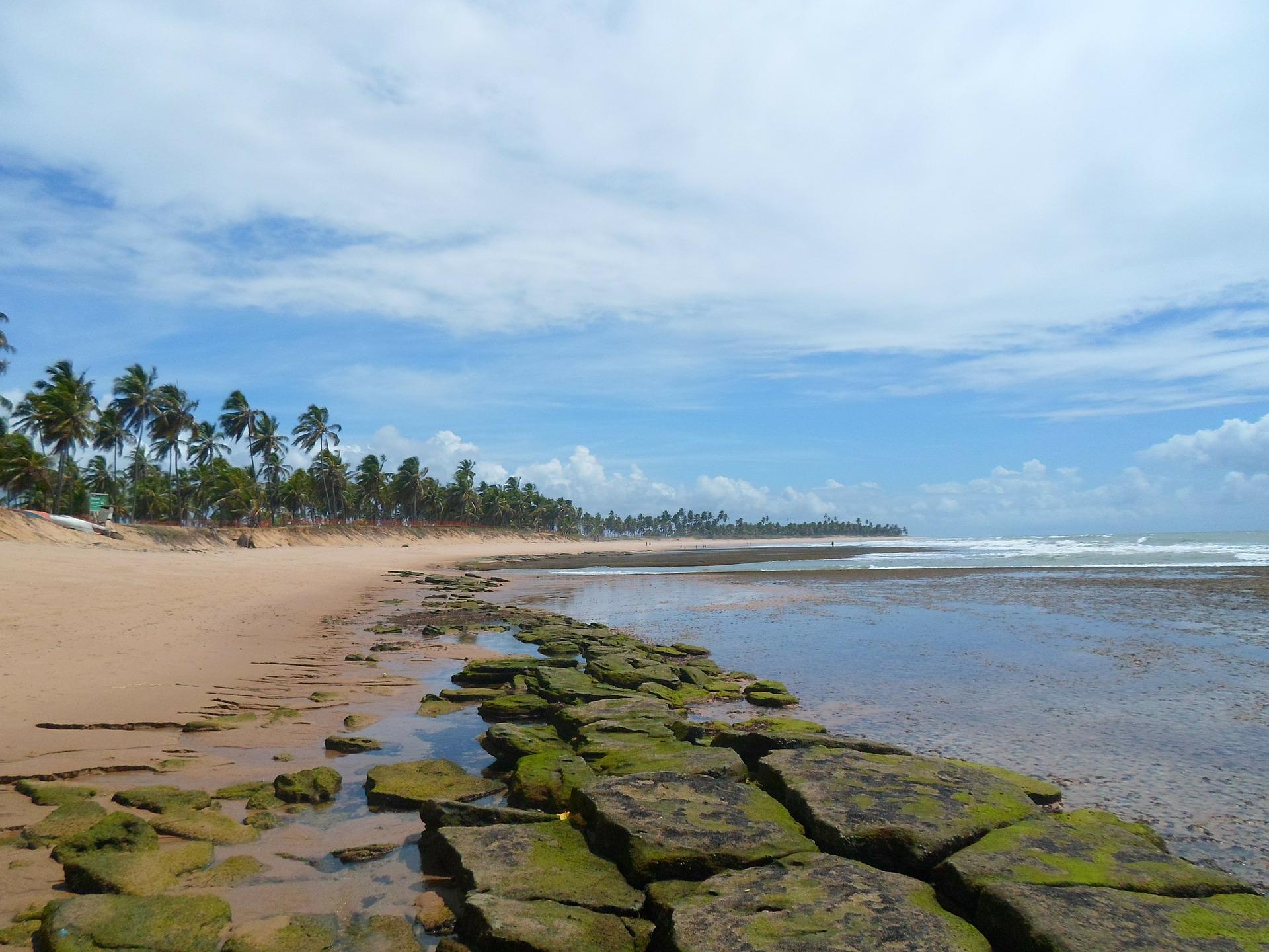 up-consorcio- praia-do-forte