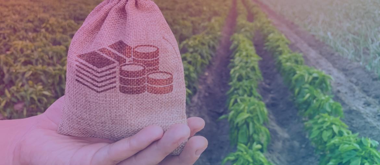 Dicas para inovar na produção agrícola