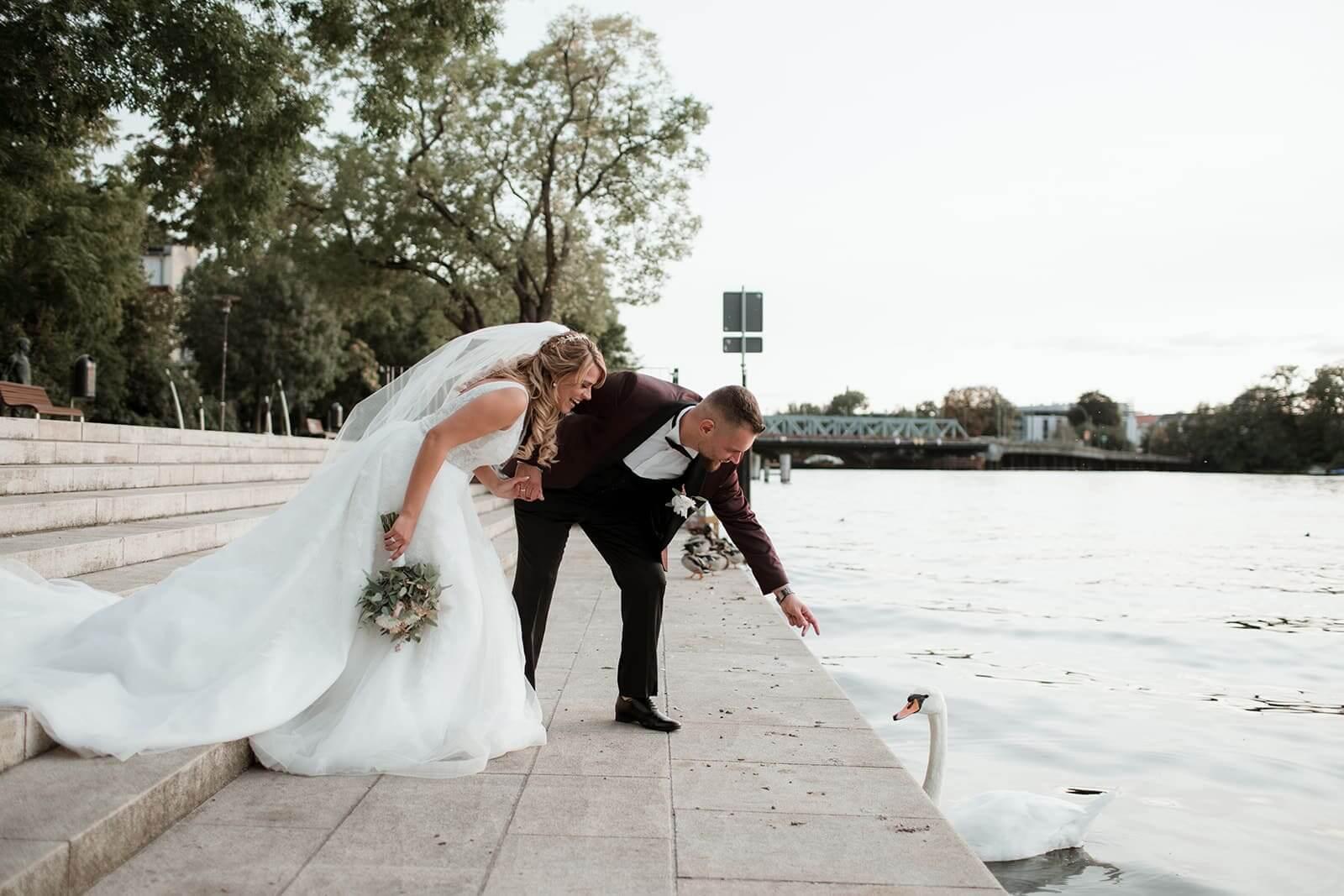 Brautpaar und Schwan