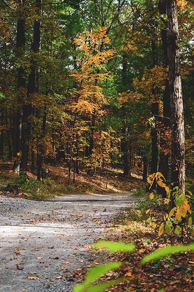 camping upstate ny