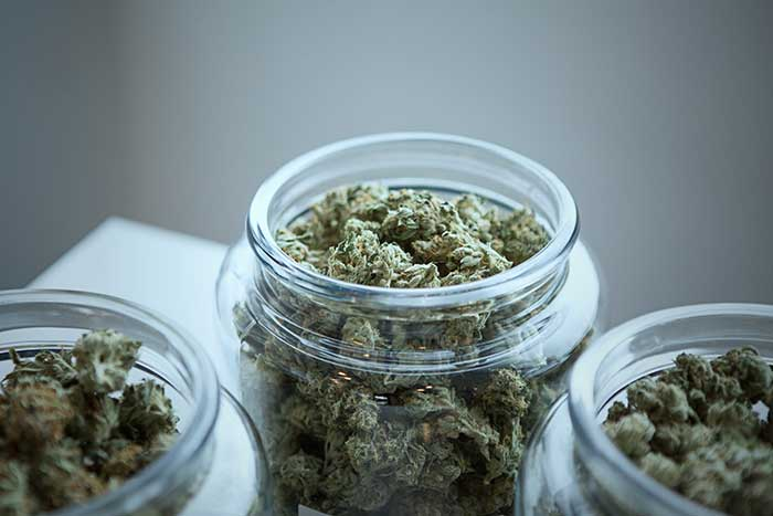 cannabis in stores glass jars light greens mecical cannabis australia there all australia
